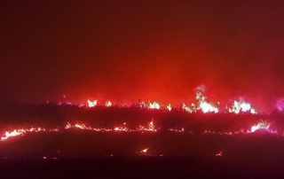 July fire near Diyarbakir, photo from al-monitor.com.