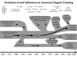 Grace Gershuny on the evolution of the organic food movement